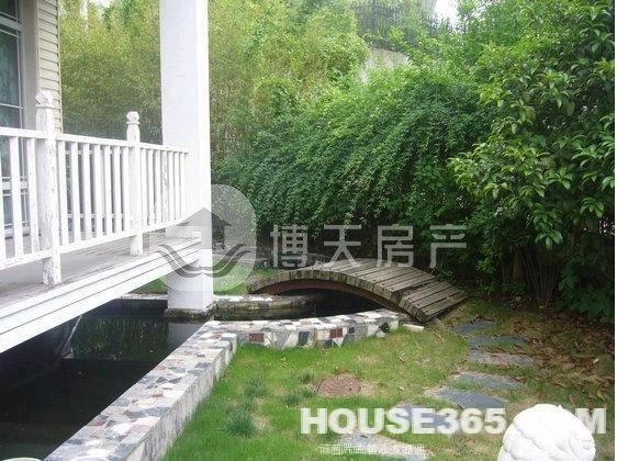 独栋别墅 豪华装修 小桥流水