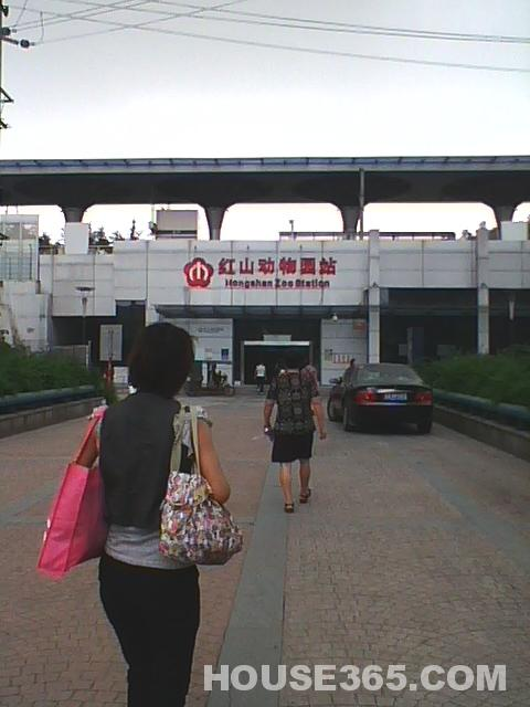 红山动物园地铁站单间400
