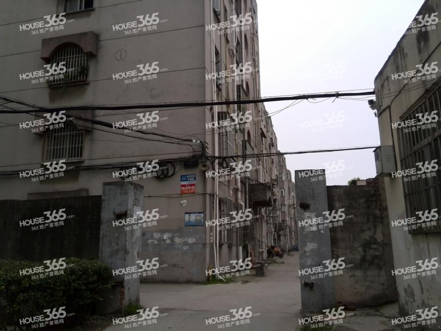 东银花园3室2厅2卫148平米整租精装