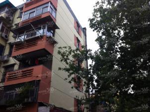 大行宫 五老村 长白街 三条巷居家2房低楼层 拎包入住