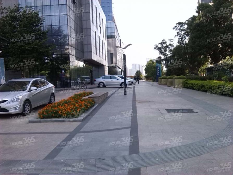 市政府天鹅湖旁 南北通透三房 五十中实验中学 看房方便