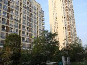 桂花园,常州桂花园二手房租房