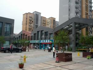 置地青湖语城,苏州置地青湖语城二手房租房