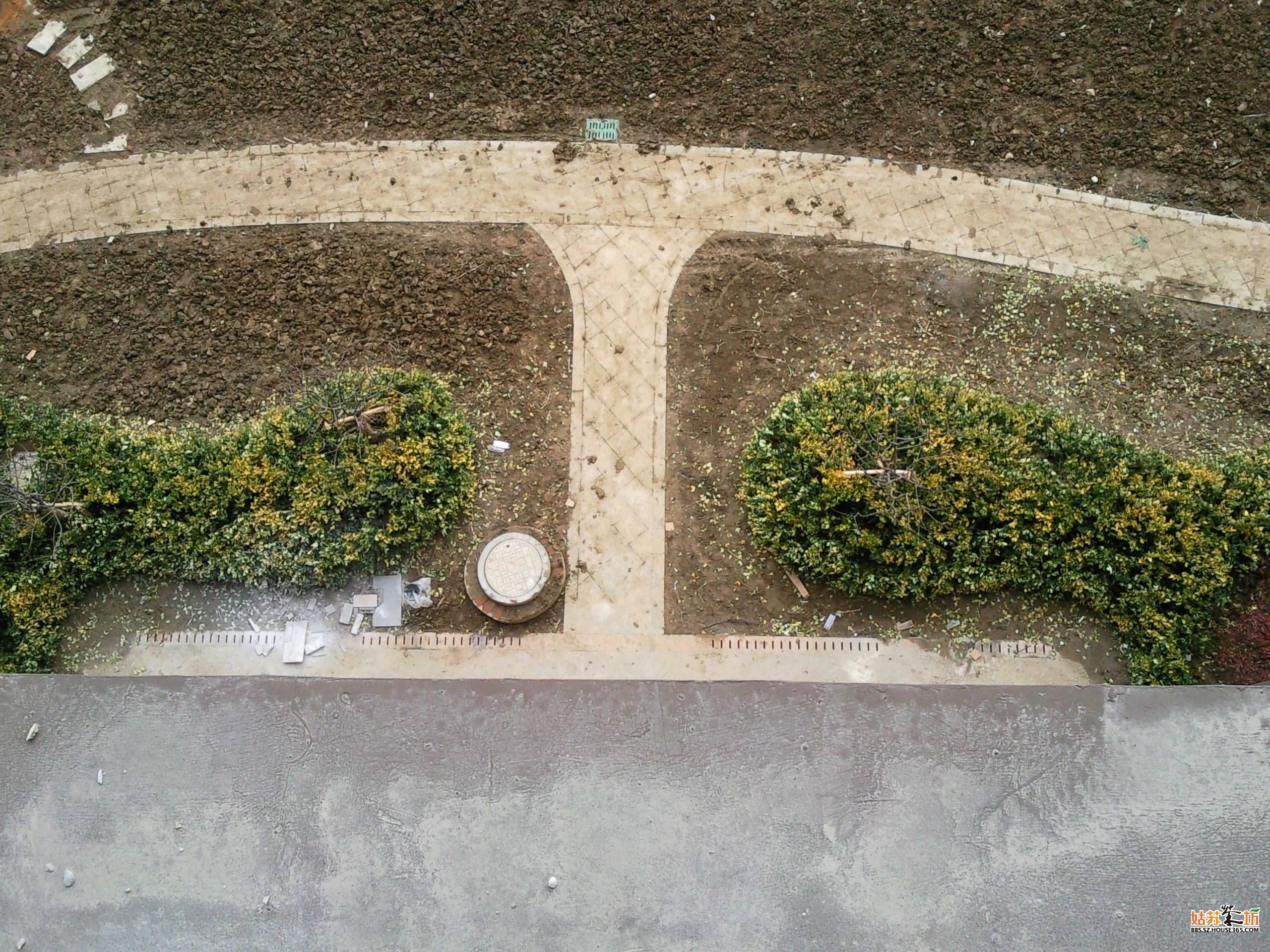 装备铺草皮的地面 高清图片
