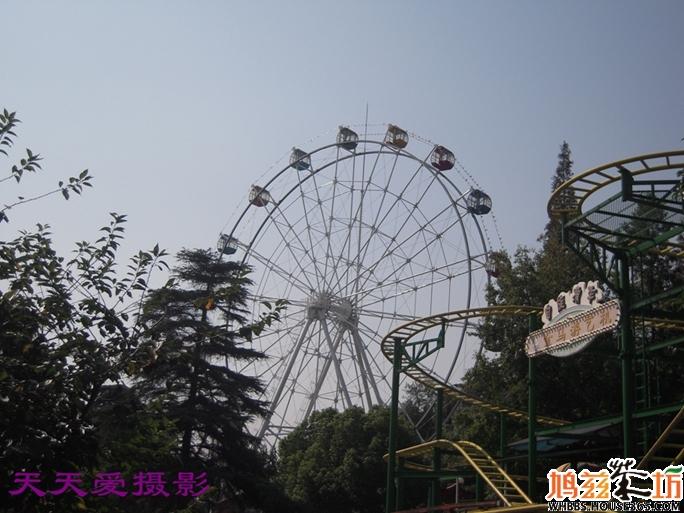 > 南京专辑之红山动物园