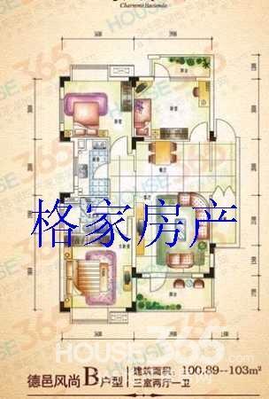 五层半出租房首层设计图
